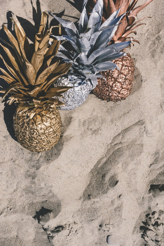 pineapple-supply-co-102693.jpg