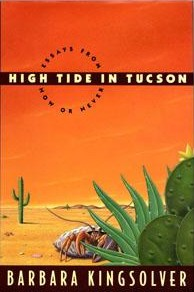 HighTideInTucson