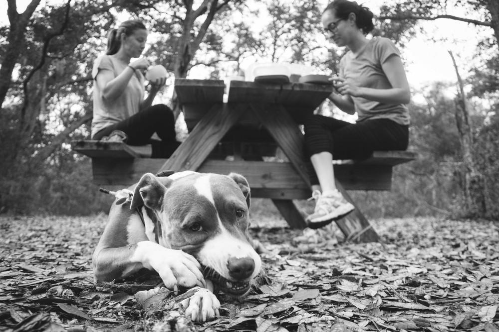 Camping with Joy-22.jpg