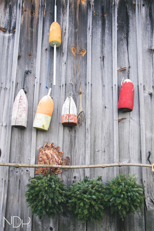 Tree Farm-16.jpg