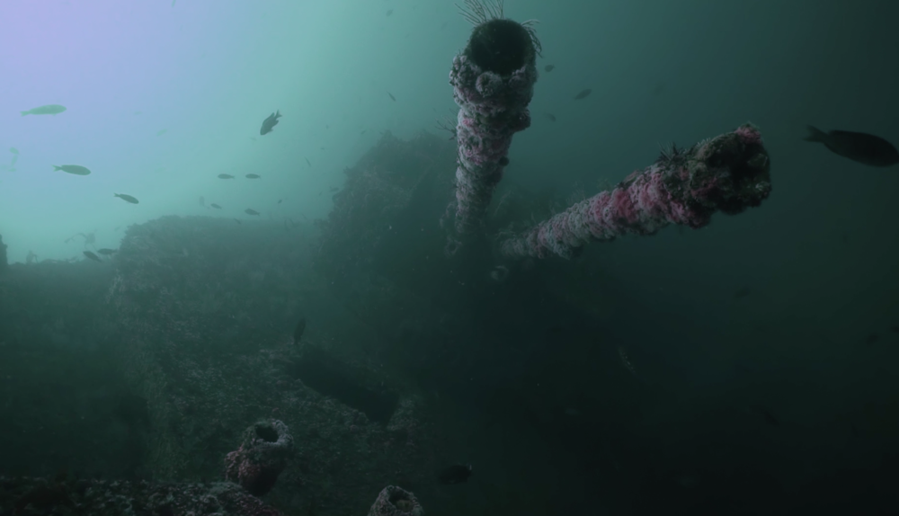 Looking down the barrels of the front guns on the Yukon wreck.