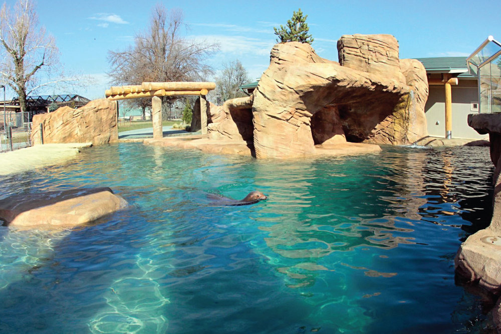 TULSA ZOO HELMERICH SEA LION COVE