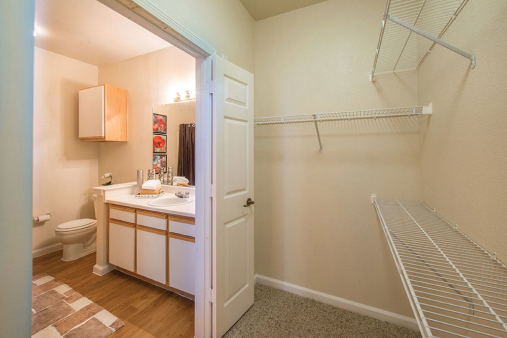 BATH AND WALK-IN CLOSET