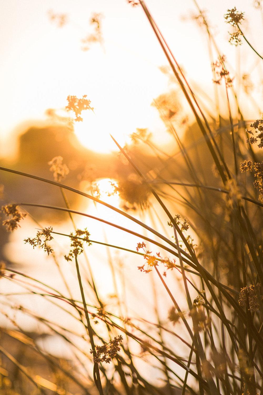 KristynVillarsPhotography317.jpg