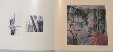Joan Wadleigh Curran Seraphin Gallery Fine Art