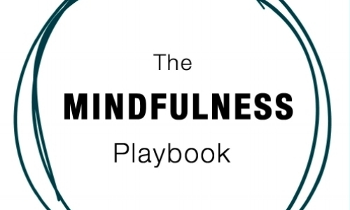 The Mindfulness Playbook - Dr. Barbara Mariposa