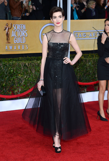 Anne Hathaway, SAG Awards 2013  Giambattista Valli Dress