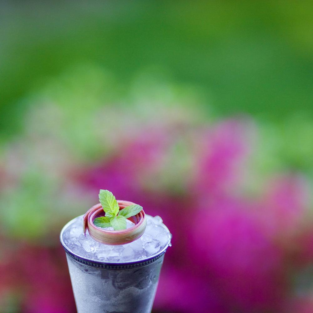 Rhubarb Lemon Mint Julep.jpg