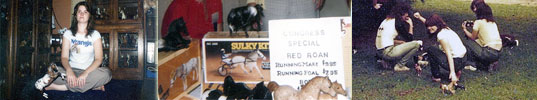 (1) DISCOVERING REPAINTS...  (2) CONGRESS SR BREYER RED ROAN RUNNING MARE $9.95...  (3) 1970'S PHOTO SHOW PREPARATION.
