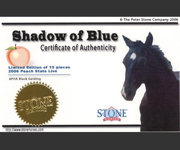 shadowCOA.jpg