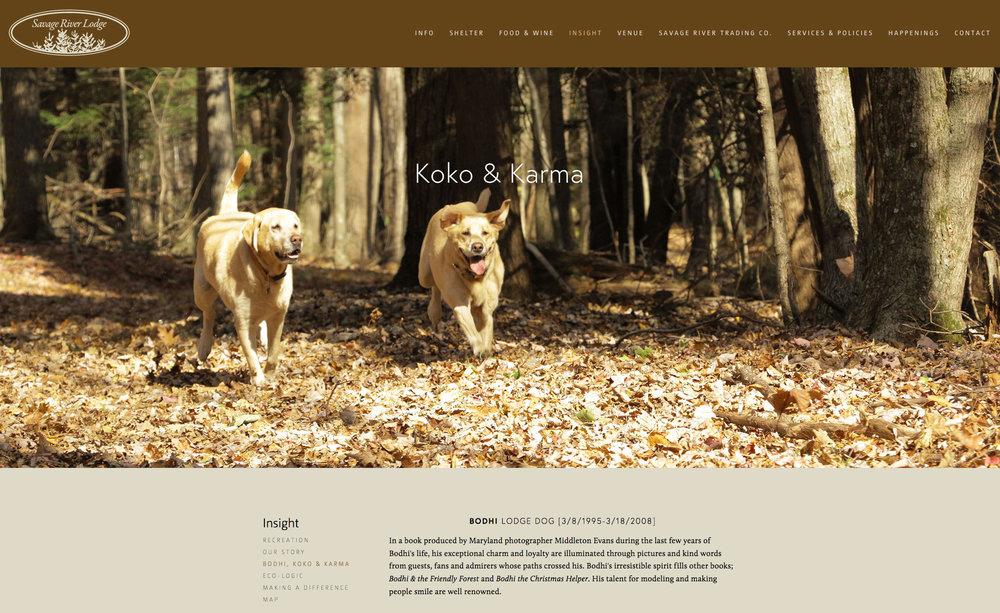 SRL_dogs.jpg