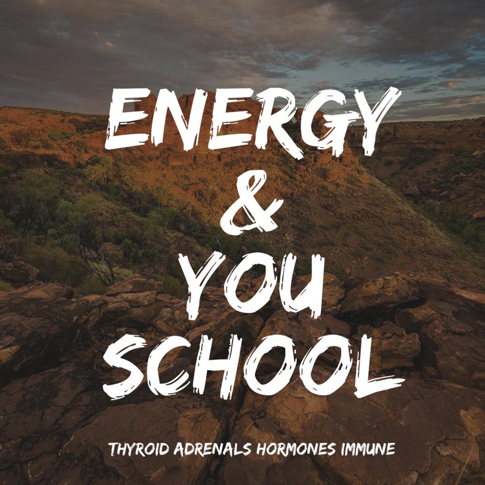 energy&YouSchool.png