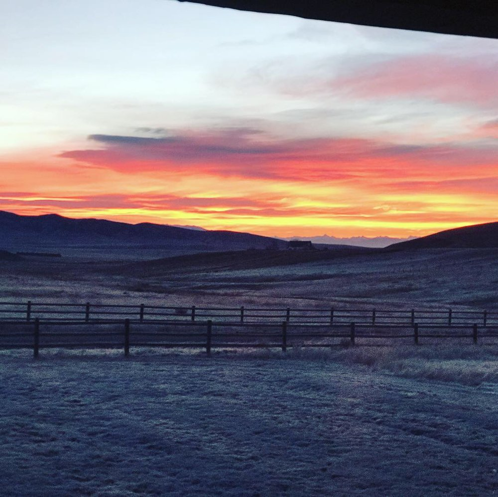 The winter sunrise from our new front yard in Montana.