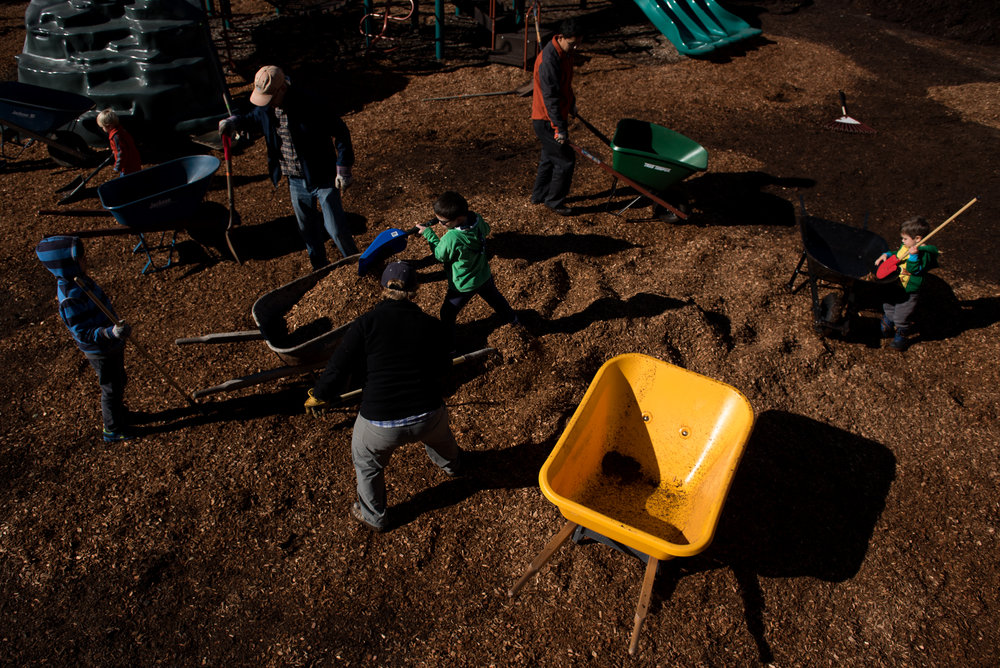 10/10/16 – Belmont, MA – Belmont residents spread wood chips during the annual Belmont Serves Day in Belmont, Mass. on Monday, Oct. 10, 2016. (Photo by Nicholas Pfosi)