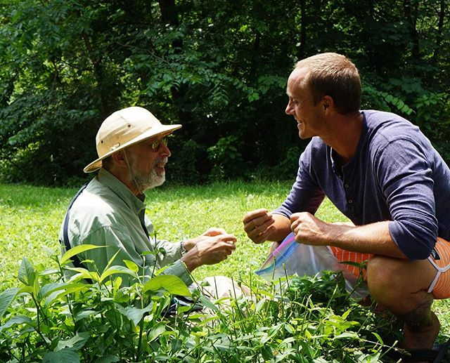 Tune in to CW93 this Sunday at 7 as @mikelofaro takes The Journey Home! Here he's foraging for greens in Central Park with Wildman Steve Brill!