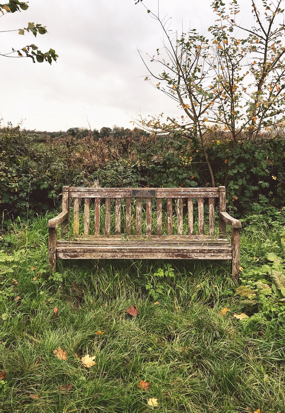 "Bench reads, ""IN LOVING MEMORY OF JAMES SELLERS. DIED 7TH MARCH 2005. PAUSE AND REST A WHILE, WHERE HE LOVED TO WALK."""