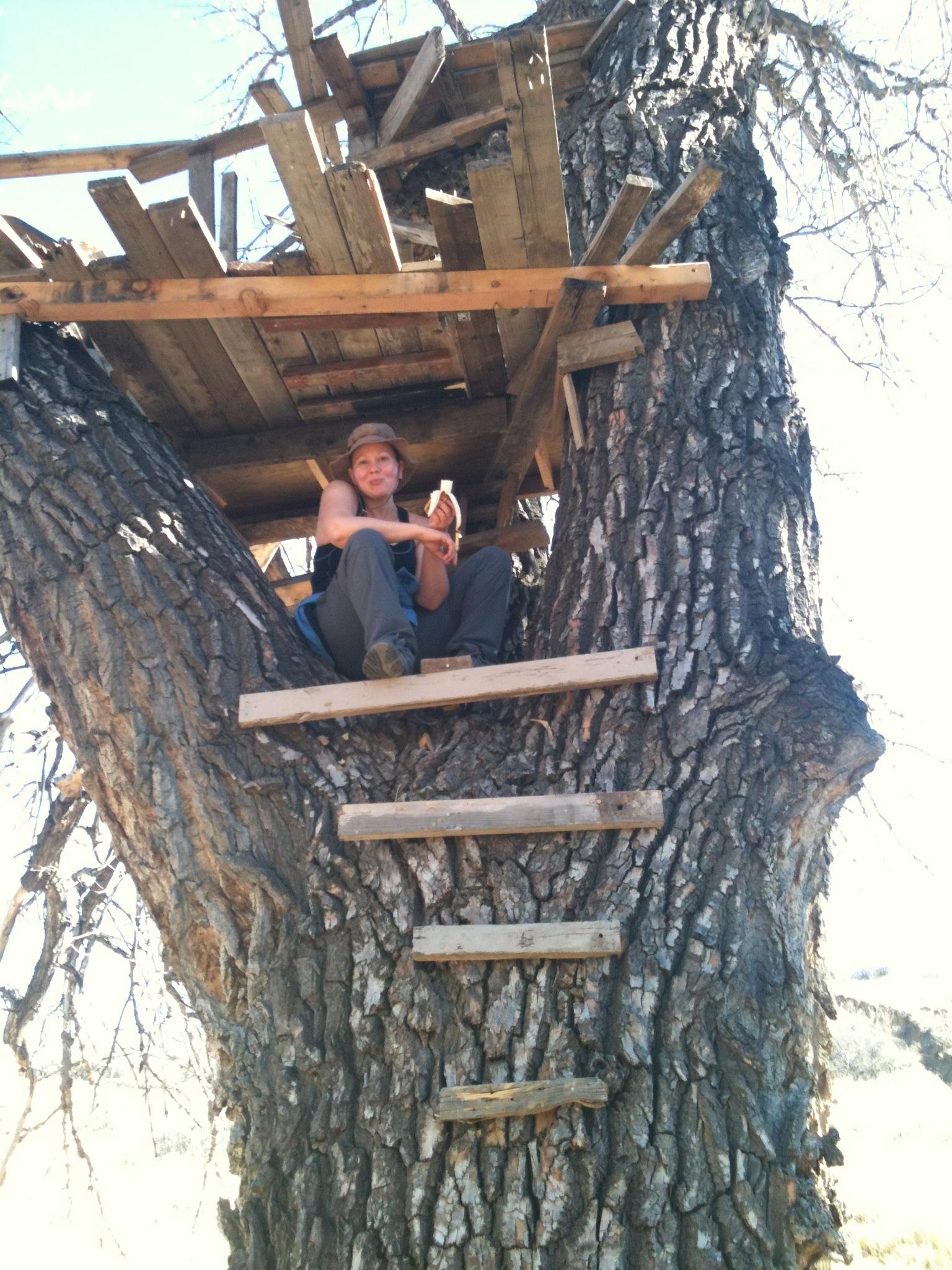 jen in treehouse