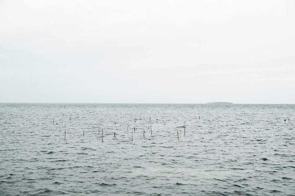 Sticks-Tonga-2011-Bruce-Foster_DSC2421.jpg