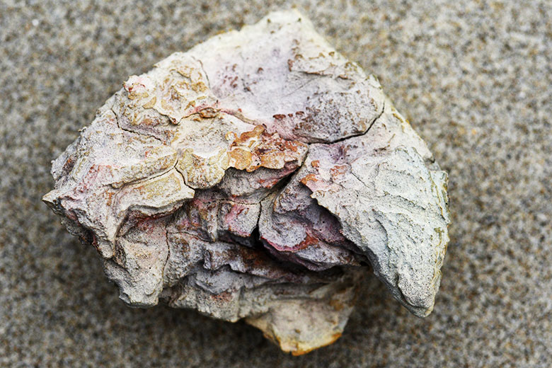 Mangawhai fractured umu stone Bruce Foster NZ