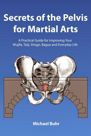 secrets_of_the_pelvis_for_martial_arts_book_review-e1428688441967.jpg