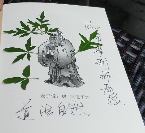 Lao Tzu used spontaneously to press leaves of a Goethean study of a plant on the way to visit the Great Wall