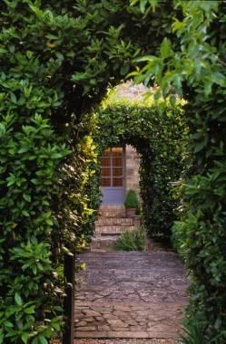 Garden Arches.jpg