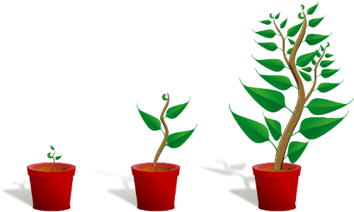 Starting a business is like growing a plant. You start with the basics, water it, tend to it, give it what it needs, and watch it grow.