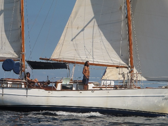 The formidable Formosa 41