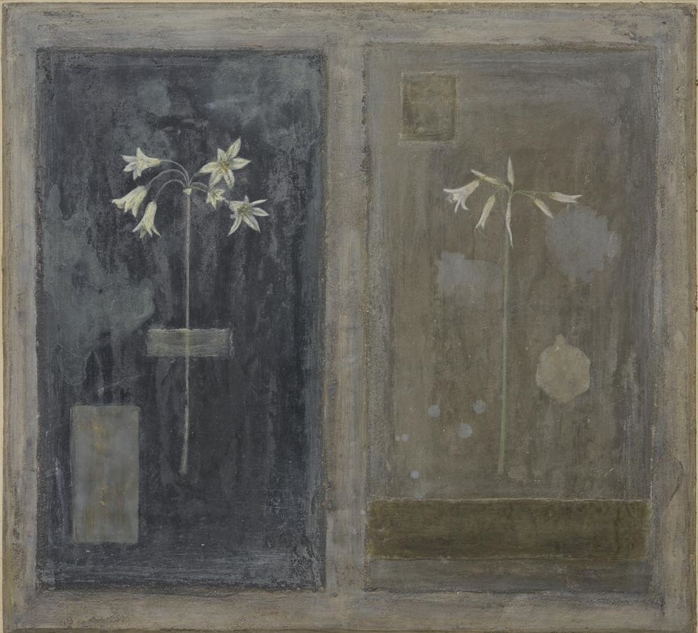 Allium Triquetrum - fresco, wax on panel 48 x 53 cm