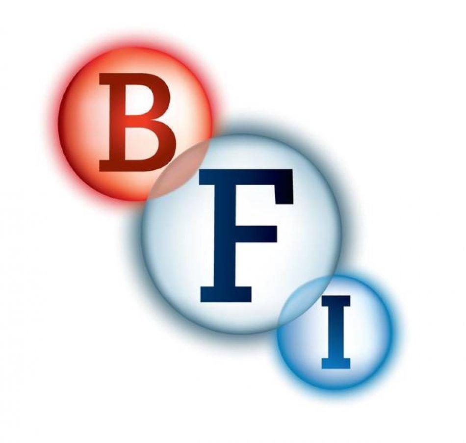 BFI logo.jpeg