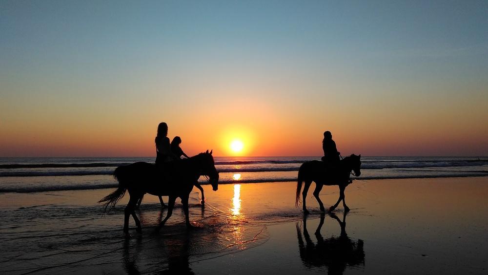 Horseback Riding On The Beach, Hawaii, Beach, Holiday, Family Holiday,