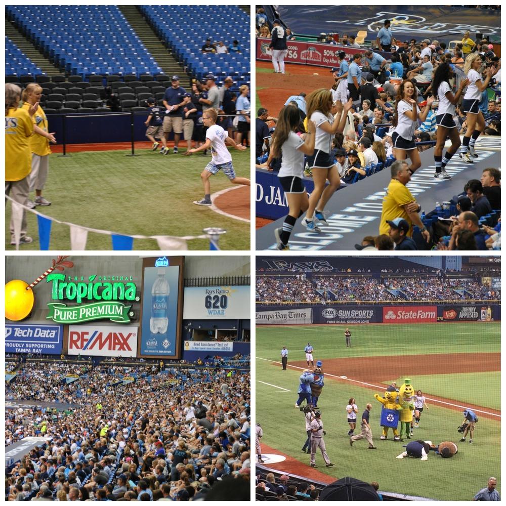 Tropicana Field, Tampa Bay Rays, New York Yankees, Florida, Tampa, Baseball, Baseball Game, Entertainment,