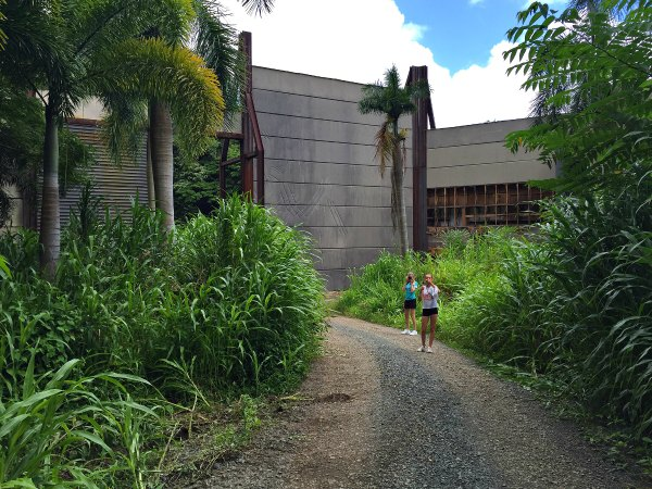 Mother and Daughter Walking Through Set Of Jurassic World Dirt Track Palm Trees And Greenery Blue Sky
