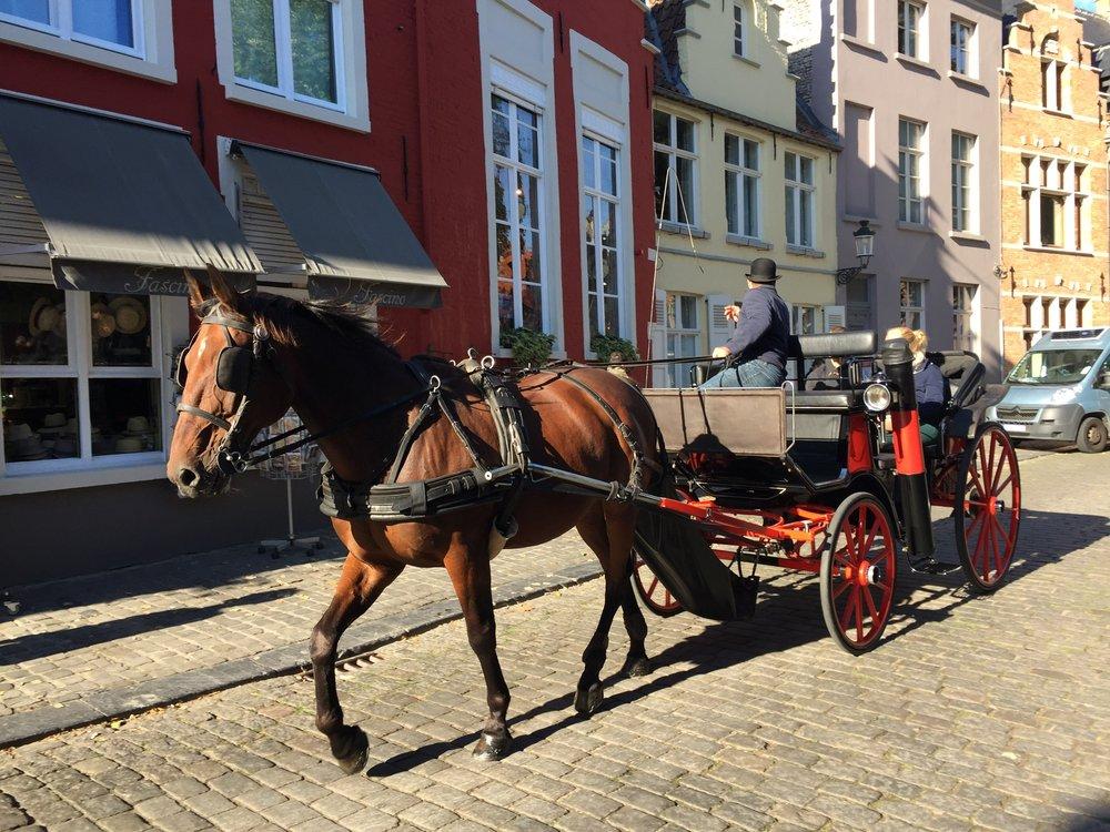 Bruges, Belgium, Horse Drawn Carriage