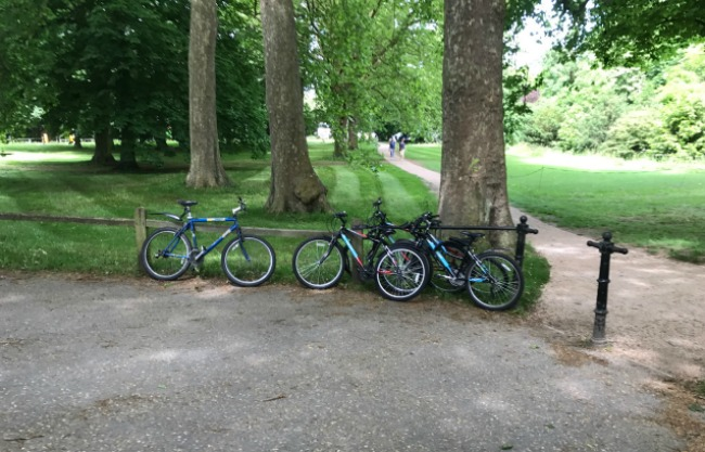 Bicycles, Mountain Bikes, Cycle Hire, Cycling, Day Out, Cambridge