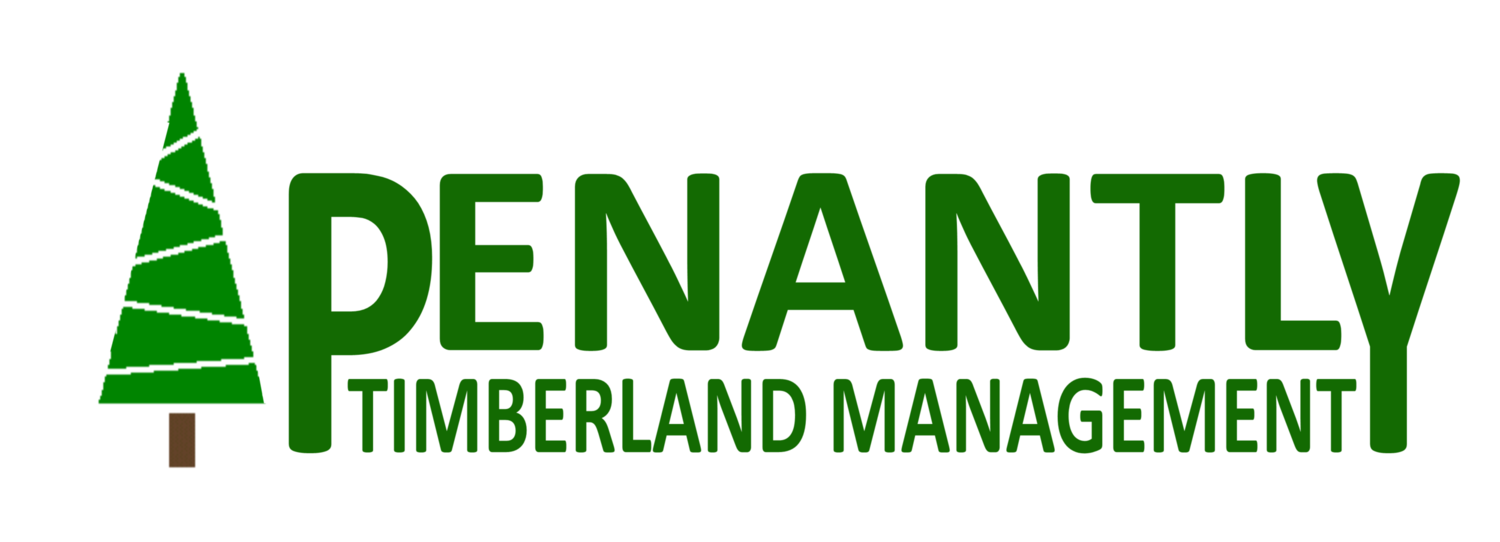 Penantly Timberland Management