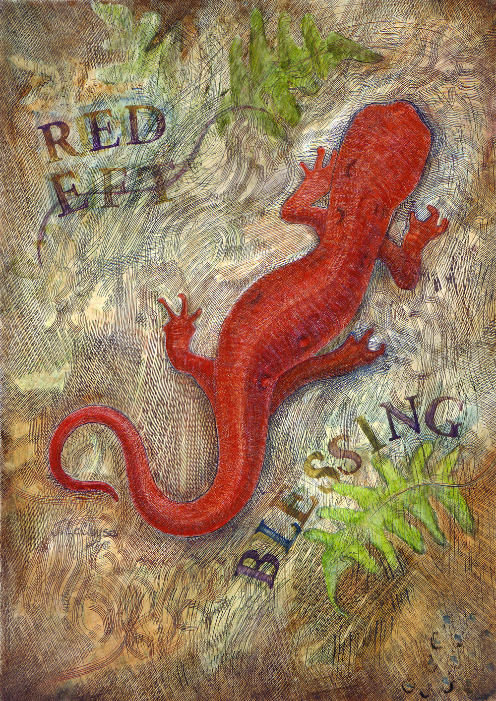 Red Eft in Resurrection Ferns
