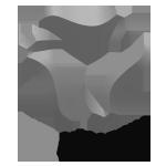 PHZ_GAME_STUDIOS_logo_grey_igdafi.png