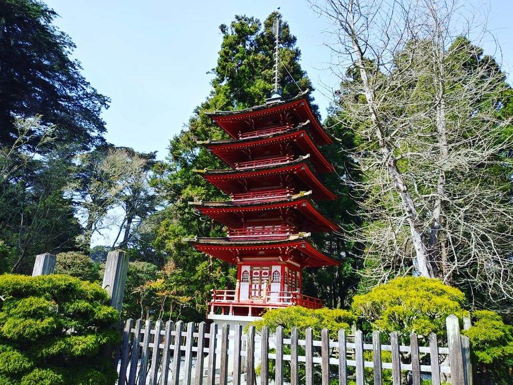 Japanese Tea Garden - San Francisco, California  Photo taken by Deana Galbraith