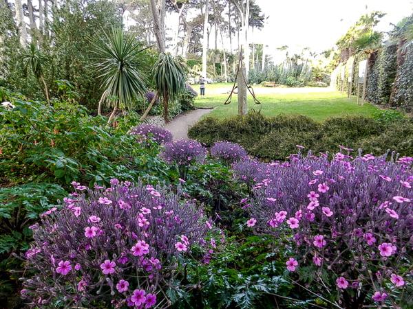 Garden Georges Delaselle, Ile de Batz, Brittany, France