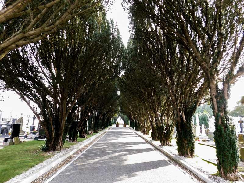Le cimetière de Glasnevin à Dublin, Irlande