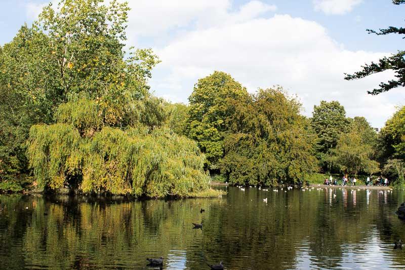 Le parc de St Stephen's Green dans le centre de Dublin