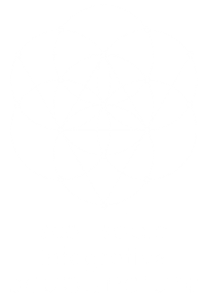 Scottsdale Integrative Acupuncture