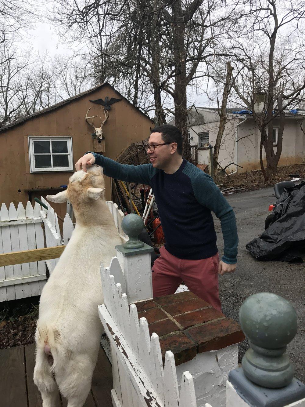 Capricorn, the mountain goat!