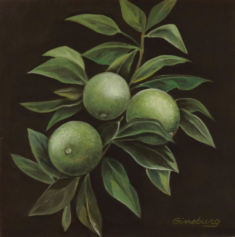 """branch of the lime""  PanPastel® Cheri GInsburg ©"