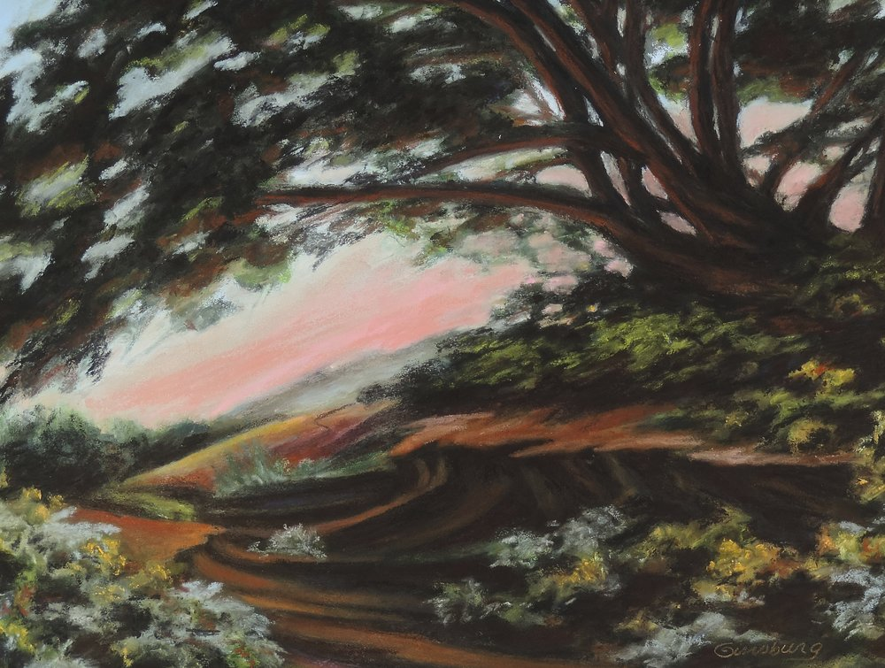"""arroyo magic"", new mexico  PanPastel® Cheri GInsburg ©  Write here..."