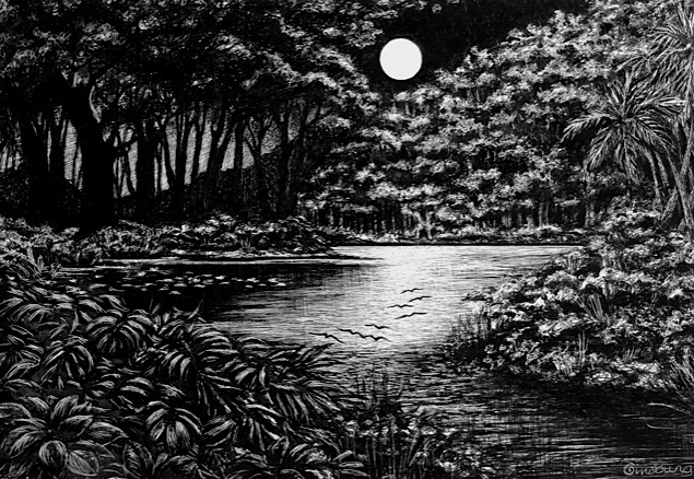 """midnight flight"" Pen and Ink Cheri GInsburg © Best of Show, Omaha Artistsm"