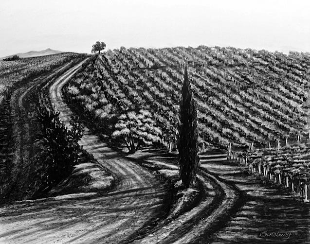 """tuscan countryside"", dievole, near vagliogli, italy  Pen and Ink Cheri GInsburg ©"