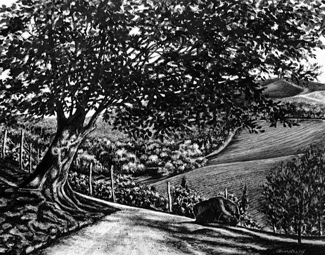 """tuscan solitude"", dievole, near vagliogli, italy Pen and Ink Cheri GInsburg ©"