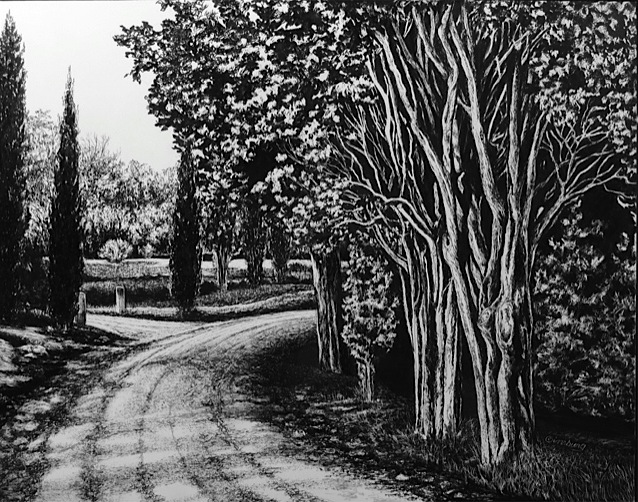 """road to vagliogli"", near vagliogli, italy Pen and Ink Cheri GInsburg ©"